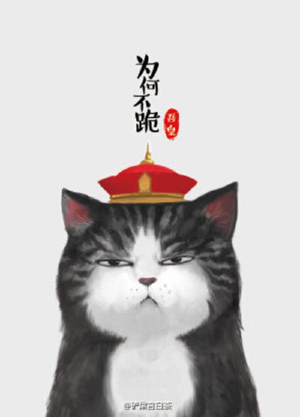 Hail Cat | Autos Post