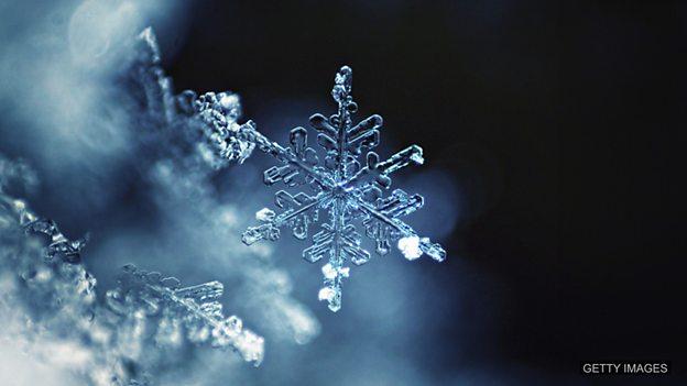 Snowflake 过于敏感的人,容易生气的人