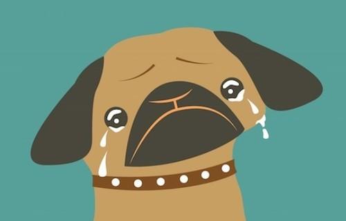 虐哭单身狗的经典语句
