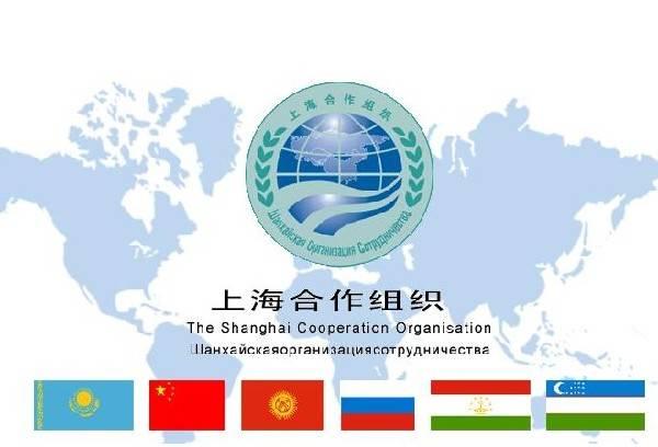 SCO是啥?各类国际组织机构盘点