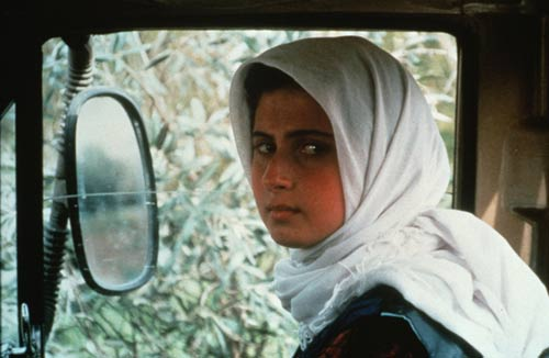 走进伊朗:伊朗电影为什么这么牛?