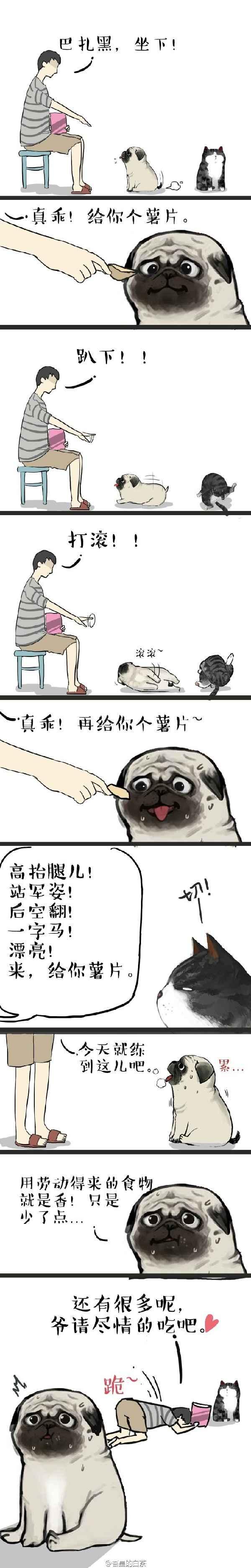 china xxx
