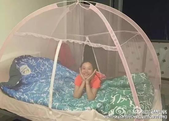 """西宁翻译公司 """"飞鱼""""爱火罐 蚊帐卖疯了"""
