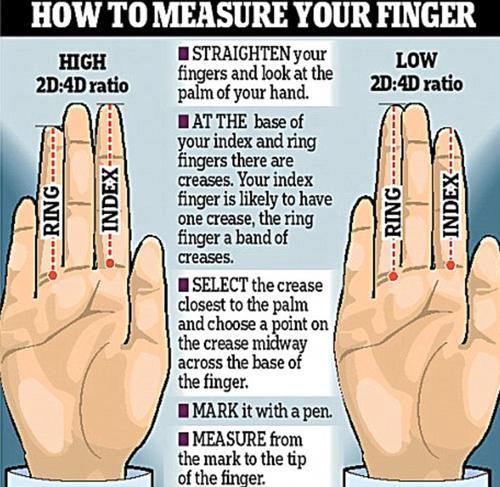 研究:手指长度透露人的性格和才干