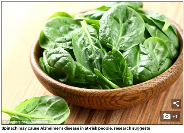 研究:吃菠菜或引发老年痴呆症