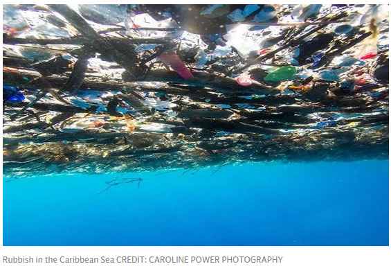 """这照片让人震惊!加勒比海被塑料垃圾""""活埋"""""""