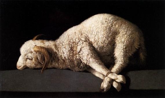 替罪羊(scapegoat)、败家羊(black sheep),为何英语中背锅的总是羊