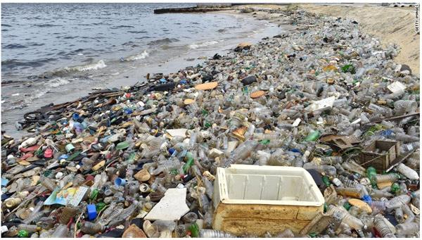 英美发起反吸管运动 对塑料吸管说不