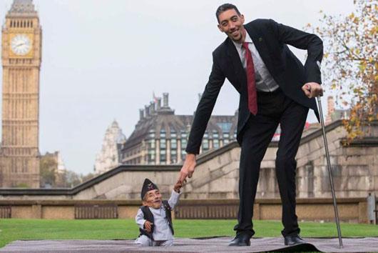 世界最高与最矮男相见