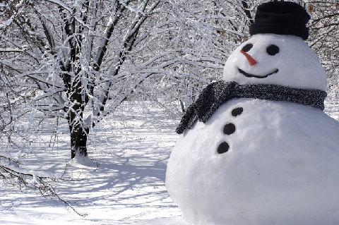 """冬天来了,细数那些与""""雪""""有关的词汇"""